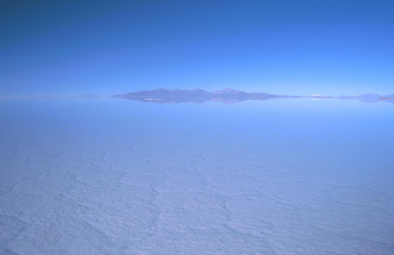 lama-glama-16-bolivia-2001