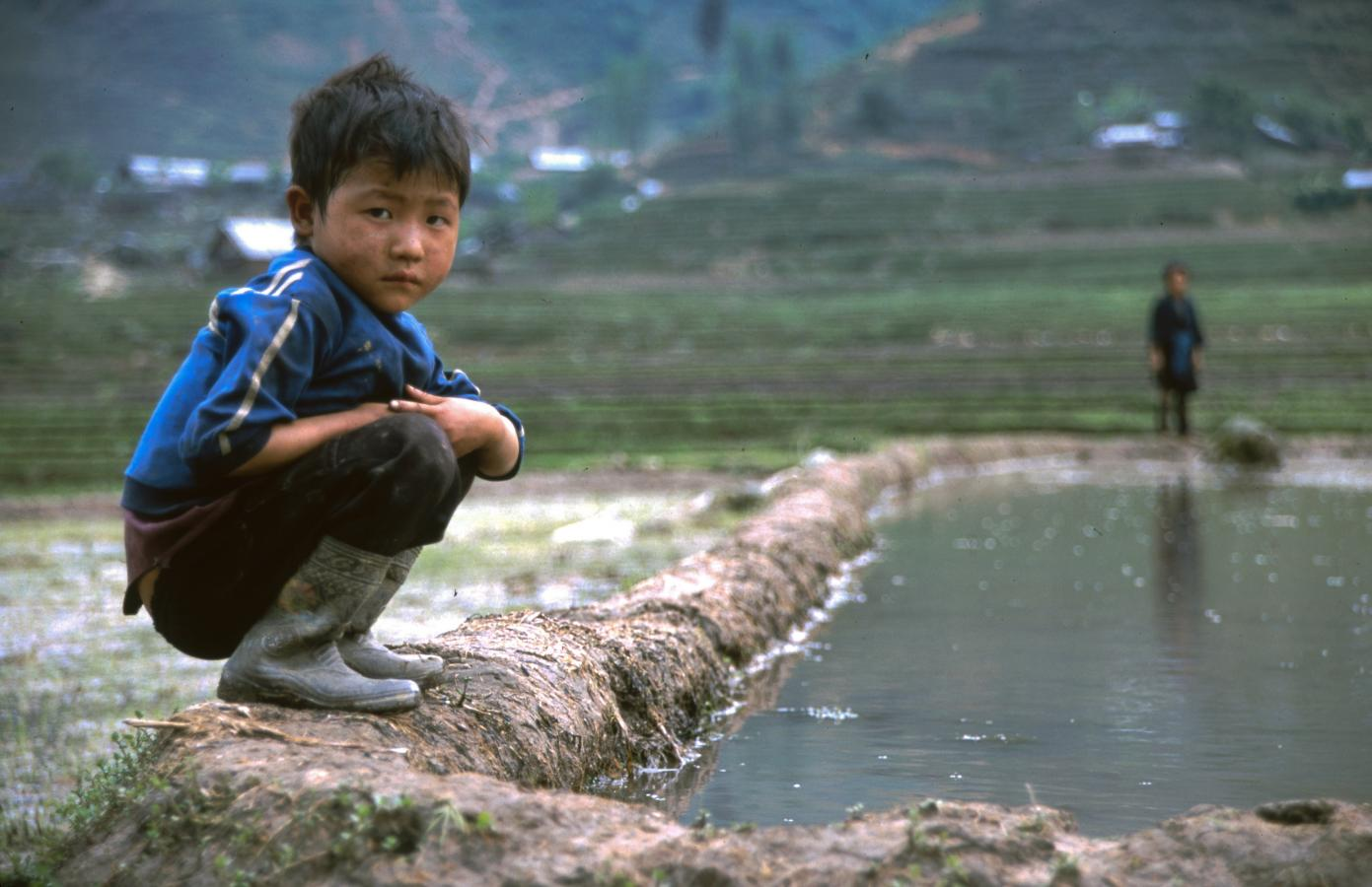 boy-helping-his-mother-in-the-ricefields