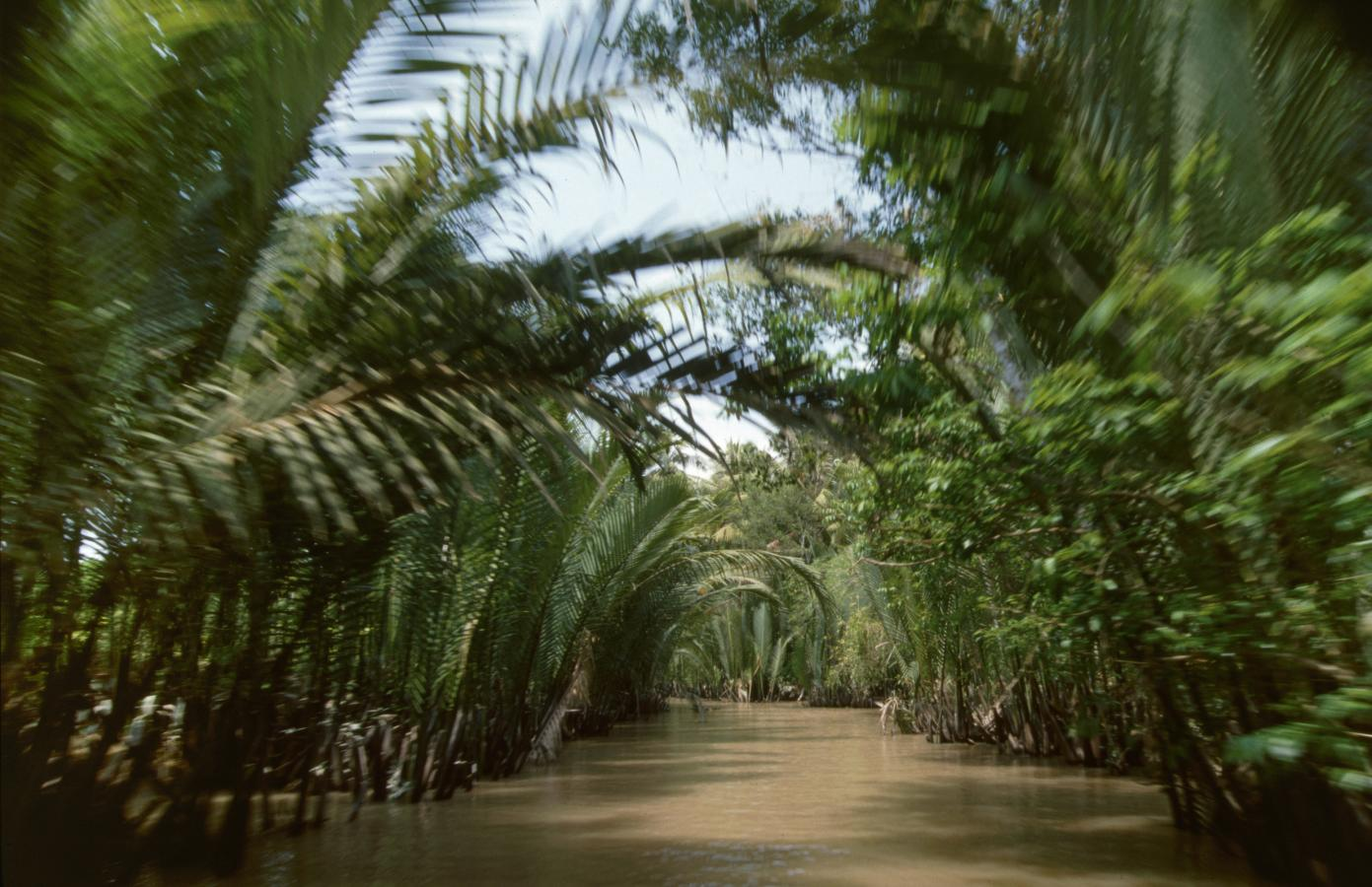 the-mekong-delta