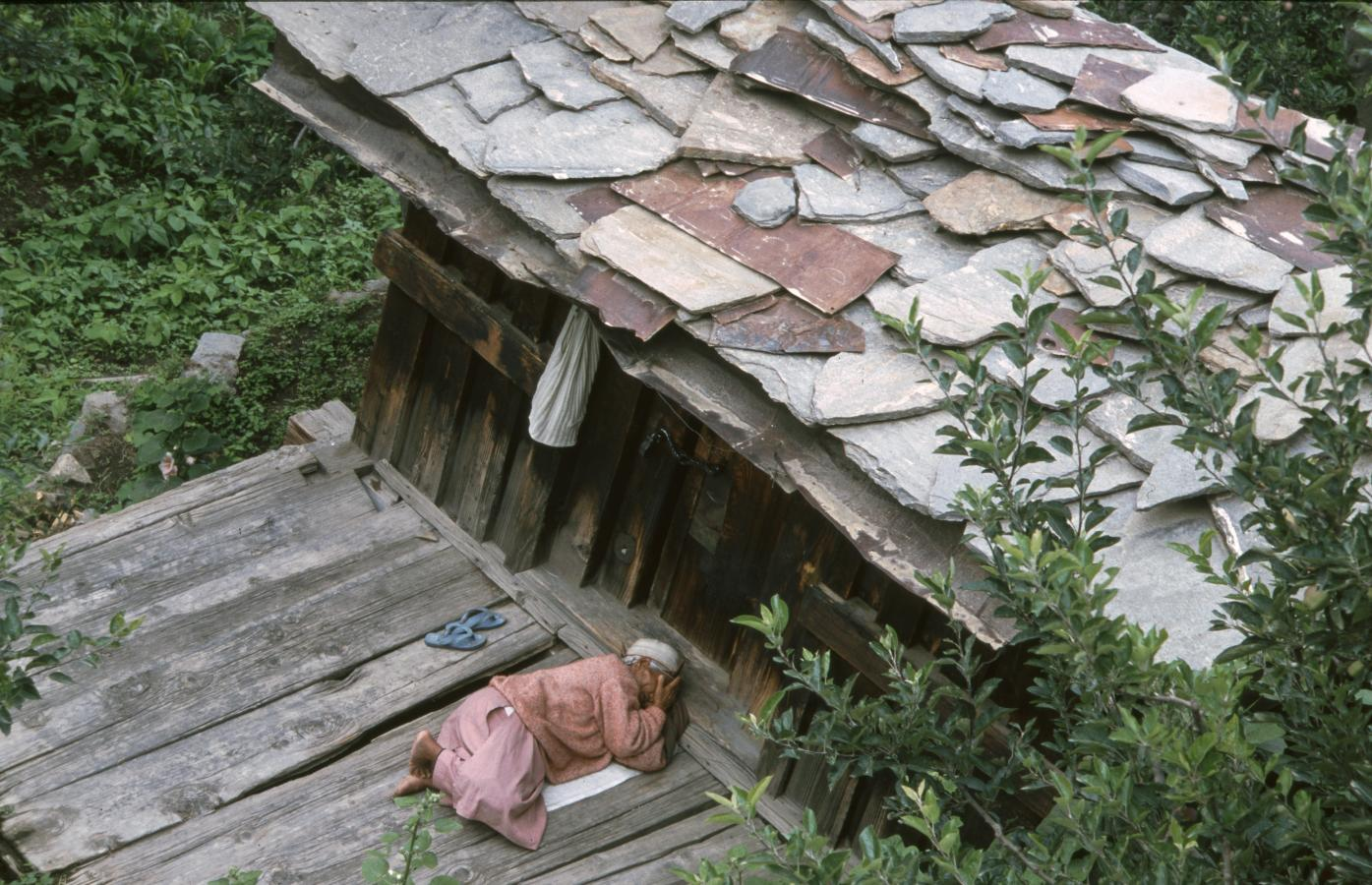 old-woman-taking-a-nap-2003